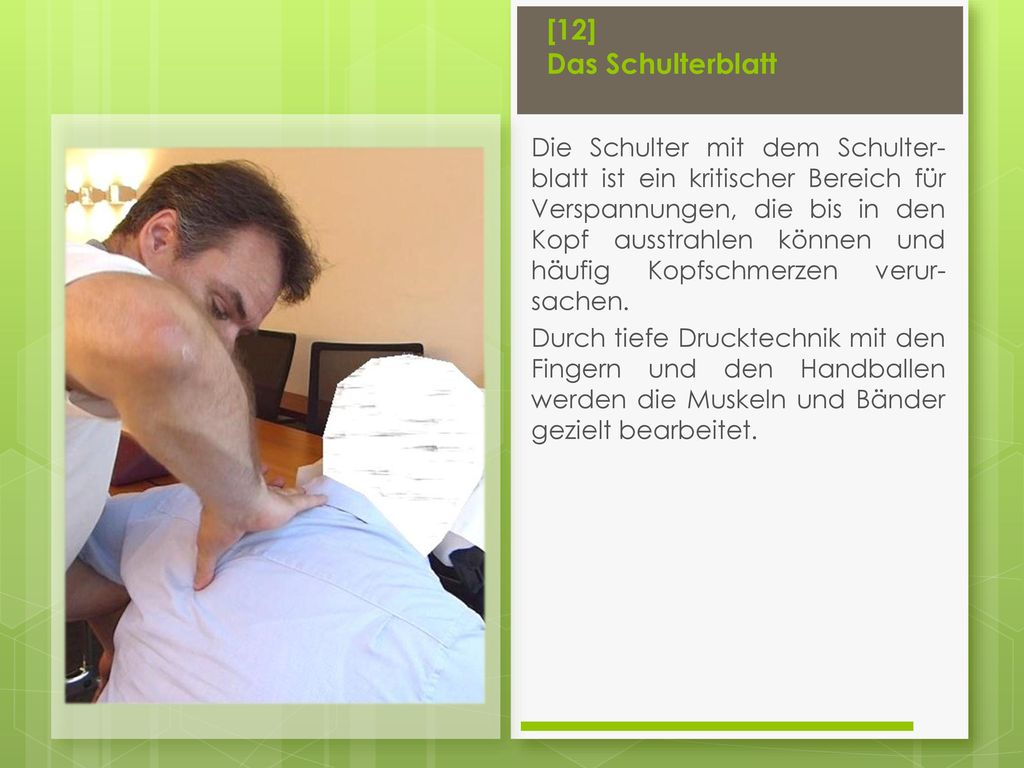 [12] Das Schulterblatt
